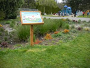 Rain garden at Crosspoint Academy