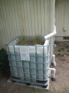 KCD Rain Garden in a Box