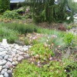 Rain Garden at Kitsap Public Utility