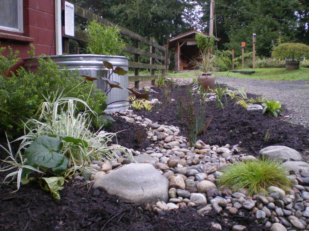 Residential Rain Garden