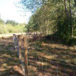 Exclusion Fencing