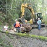 Illahee Creek- Log placement