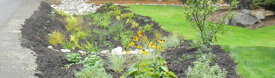Rain Garden Program