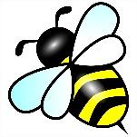 Native Pollinator