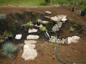 Build your own rain garden