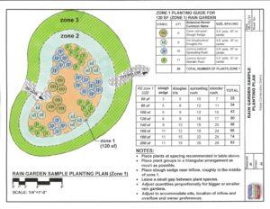Rain Garden Sample Planting Plan